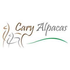 Cary Alpacas